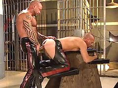 Fetish slave doggy getting pumped raw from behind