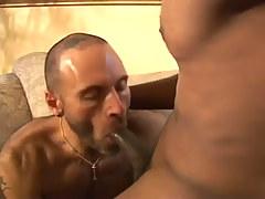 His Principal Shady Cock