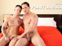 Playful Buddies