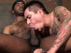 Diego Sanchez & Dirty Dee