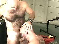 Ready gay sucks dong and licks hirsute hole