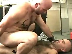 Mature gay bangs in doggy style and rides jock