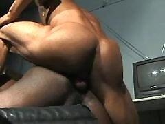 Black homo spreads for intense knob