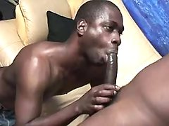 Darkish twink aficionados in messy anal fest
