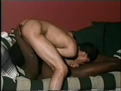 Murky Gangsta Homo