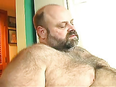 Bear mature gay enjoys oral act of love