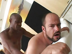 Bear gay penetrated by gangsta guy in sofa