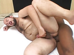 Fat hairy male fucked by dark gay