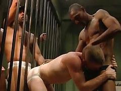 Two darksome guards upload poor prisoner
