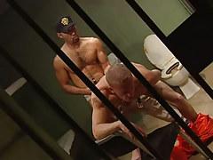 Bear guard jazzes appetizing prisoner