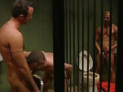 Raunchy prisoners greedily swallow cocks