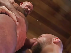 Old hairy faggot sucked by bear gentleman