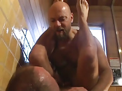 Ripe bear homosexuals fuck in washroom