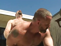 Old bear gay tough fucks constricted studs outlet