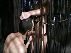 Gay boy sucks poor dude in cage