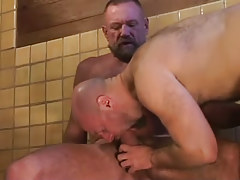 Bear dilf swallows hard knob of ready gay