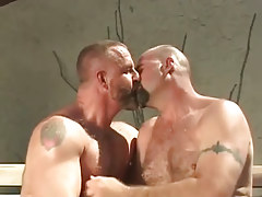 Mature bear man-lovers take up with the tongue outdoor