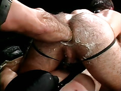 Bear gay fistfucks hairy gentlemen asshole