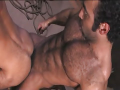 Bear Arabian man-lover fucks fellow in doggy style