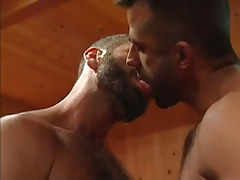 Bear faggot lick every other