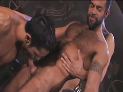 Bushy Arabian gays throat cocks in pyramid