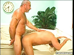 Silver bear father jazzes man in doggy style