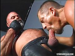 Ready man-lover sucks old hairy friend in leather