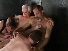 Lusty daddies sucked by fellows