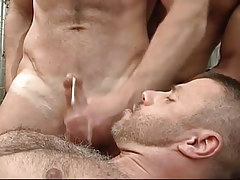 Bawdy gay purchases a portion of spunk on his hairy chest
