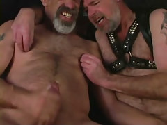 Seasoned bear homosexuals jizz by stoops