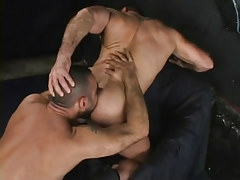 Muscle homo licked by hairy dilf