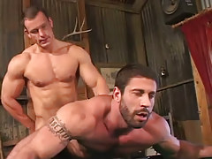 Muscle hunk fucks bear dilf in doggy style