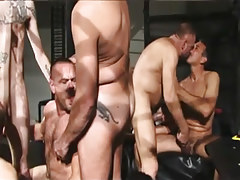 Unshaved mature gays suck each other in orgy