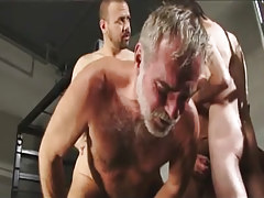 Hairy gay men fuck silver daddy in groupie