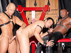 Cock-craving doxy AJ is bald & dominated by Jordano & Marc